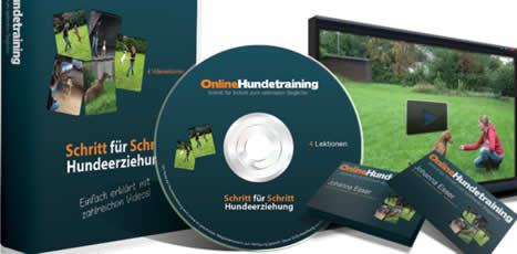 Online Hundetraining - online-hundetraining
